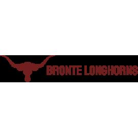 Bronte Elementary School - Bronte