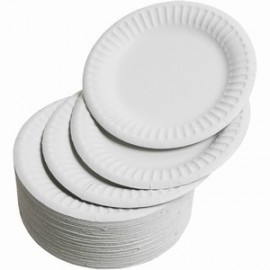 Paper Plates / Napkins / Cutlery